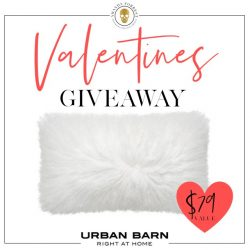 Valentine's Giveaway! Luxury Pillows